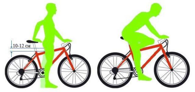 Выбор конструкции велосипеда