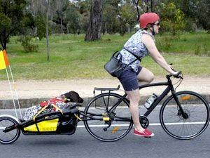 велосипед с тележкой