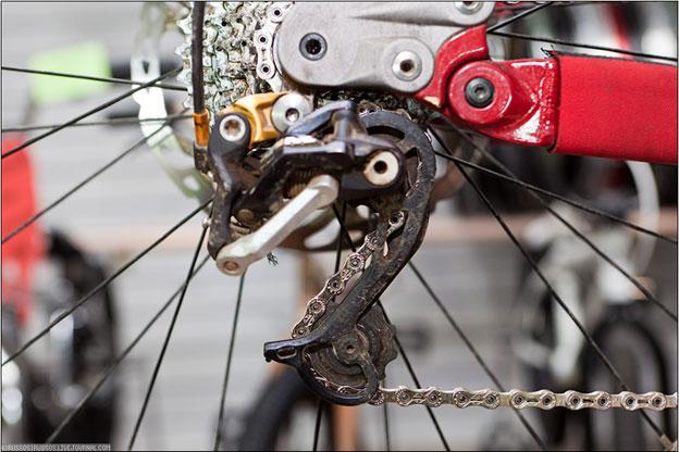 кандидатов почему на скорстном велосипее перескакивает скорость книга поможет Вам