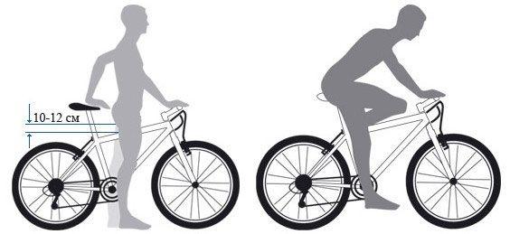 правильное положение велосипедиста