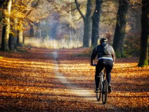 осенняя велопрогулка